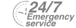 24/7 Emergency Service Pest Control in Orpington, Chelsfield, Downe, BR6. Call Now! 020 8166 9746